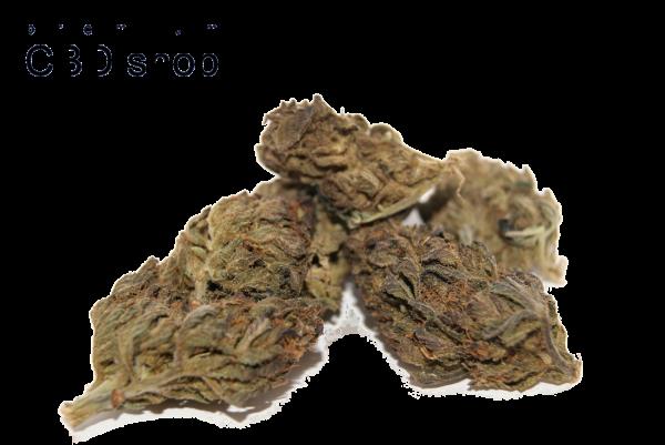Portland Black CBD Bud blüte linz bestellen lieferung