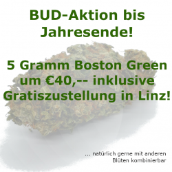CBD Blüten Aktion Boston Green Zustellung in Linz
