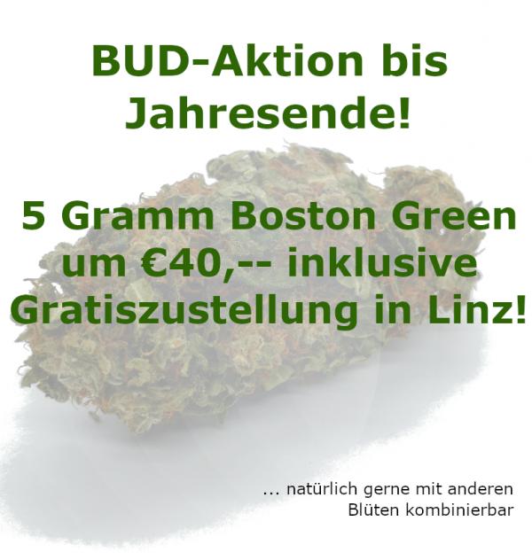CBD Blüten Aktion Boston Green Zustellung in Linz